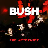 The Afterlife (Radio Edit) by Bush