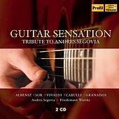 Guitar Sensation by Various Artists