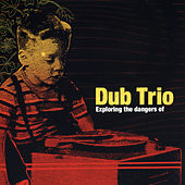 Exploring The Dangers Of by Dub Trio