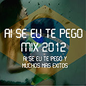 Ai Se Eu Te Pego Mix 2012 by Various Artists