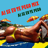 Ai Se Eu Te Pego Mix by Various Artists