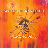 Should Have Seen It Coming by Split Lip Rayfield