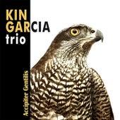 Accipiter Gentilis by Kin Garcia Trio
