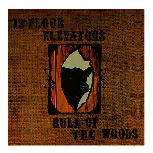 Bull of the Woods by 13th Floor Elevators