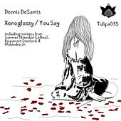 Xenoglossy / You Say by Dennis DeSantis