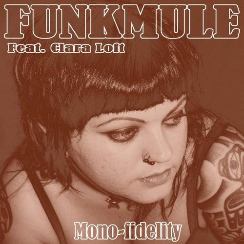 Mono-Fidelity by FunkMule