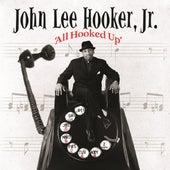 All Hooked Up by John Lee Hooker Jr. (2)