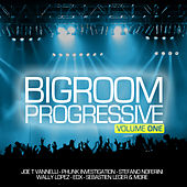 Progressive Bigroom, Vol. 1 by Various Artists