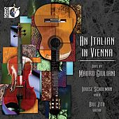 An Italian in Vienna by Louise Schulman