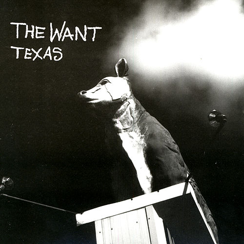 Texas by The Want