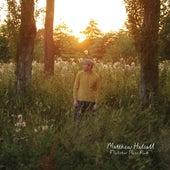 Fletcher Moss Park by Matthew Halsall