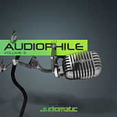 Audiophile Vol.3 by Various Artists