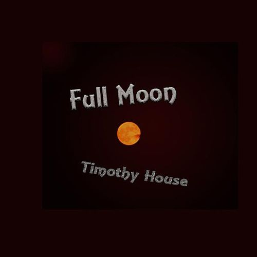 Full Moon by Timothy House