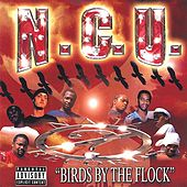Birds By The Flock by Various Artists
