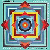 Perfect Harmony by Karizma