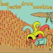 Hoop + Wire by Boy Eats Drum Machine
