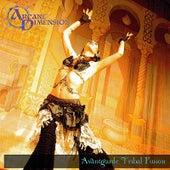 Avantgarde Tribal Fusion - EP by Arcane Dimension