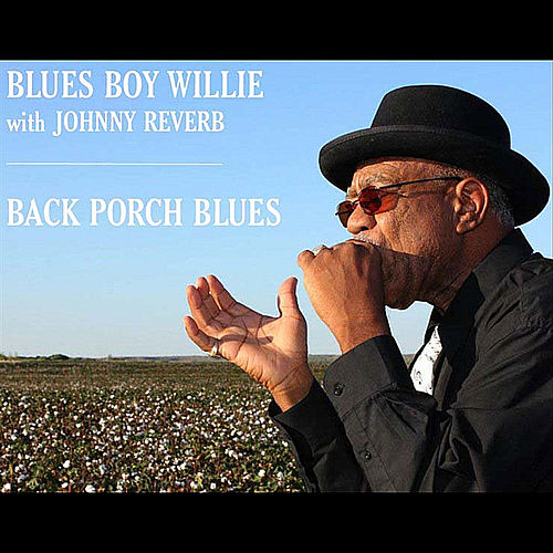 Back Porch Blues (feat. Johnny Reverb) by Blues Boy Willie