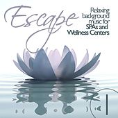 Escape Vol. 1 Relaxing Background Music for SPAs and Wellness Centers by Various Artists