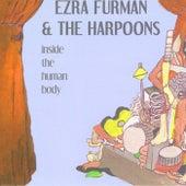 Inside the Human Body by Ezra Furman