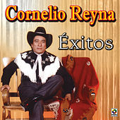 Exitos by Cornelio Reyna