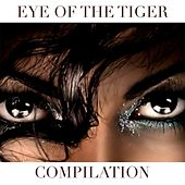 Eye of the Tiger Compilation by Disco Fever