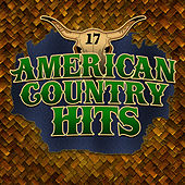 Today's Top Country Hits, Vol. 17 by American Country Hits