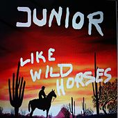 Like Wild Horses by Junior