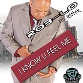 I Know You Feel Me by Roblo