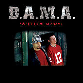 Sweet Home Alabama by Bama