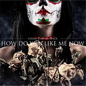 How Do You Like Me Now by Chomp Chomp Attack!