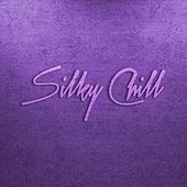 Silky Chill Chill House & Chill Out by Various Artists