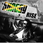 Rise von Shaggy
