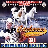 30 Primeros Exitos by Los Cachorros de Juan Villarreal