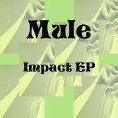 Impact EP by Mule