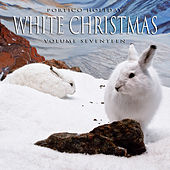 Portico Holiday: White Christmas, Vol. 17 by Various Artists
