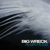 Albatross by Big Wreck