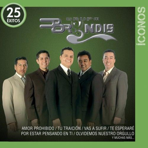 Íconos 25 Éxitos by Grupo Bryndis