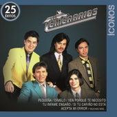 Íconos 25 Éxitos by Los Temerarios