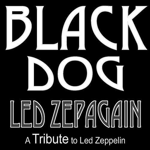 Black Dog by Led Zepagain