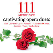 111 Minutes of Captivating Opera Duets - Don Giovanni - Aida - Arabella - Hänsel und Gretel - Carmen - Tosca - Zauberflöte by Various Artists