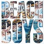 The Beach Boys by The Beach Boys