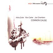 Common Cause by Attila Zoller