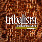 Tribalism Vol.5 - The Urban House Sound by Various Artists