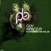 Guy Mantzur's Plattenbank Compilation Vol.2 (mixed by Guy Mantzur) by Various Artists