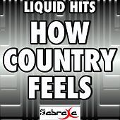 How Country Feels (A Tribute to Randy Houser) by Liquid Hits