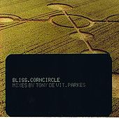 Corn Circle von Bliss