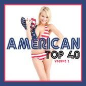 American Top 40 Volume 1 by Various Artists