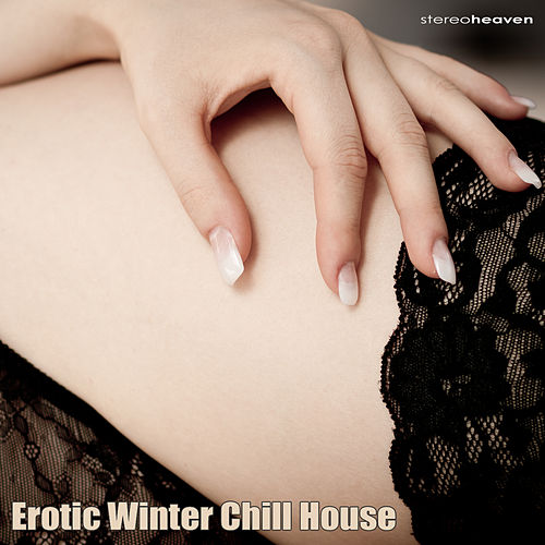 Erotic Winter Chill House by Various Artists