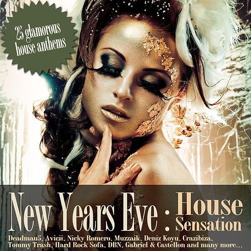 New Years Eve House Sensation by Various Artists
